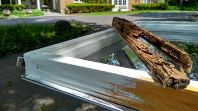 Wooden windows: restoration or replacement