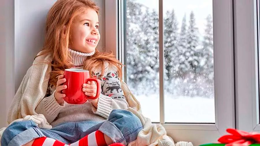 How To Prepare Your Windows For Winter